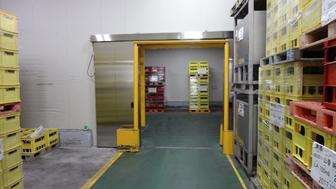冷蔵倉庫 新設
